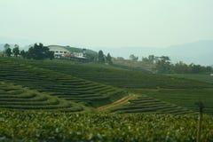 Exploração agrícola na montanha Foto de Stock