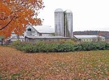 Exploração agrícola na queda do norte do estado NY Fotografia de Stock