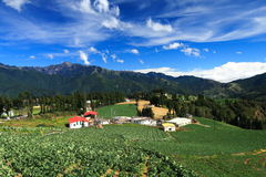 Exploração agrícola nas montanhas Imagens de Stock