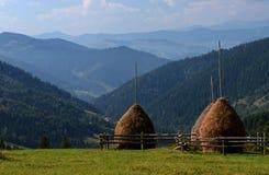 Exploração agrícola nas montanhas Carpathian em Ucrânia fotografia de stock