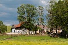 Exploração agrícola no Polônia Fotos de Stock Royalty Free