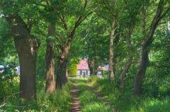 Exploração agrícola nos Países Baixos Imagens de Stock Royalty Free