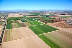 Exploração agrícola Phoenix Imagem de Stock