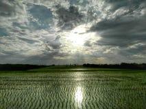 Exploração agrícola refletindo clara Fotografia de Stock