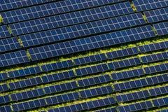 Exploração agrícola solar Fotos de Stock Royalty Free