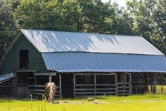 Exploração agrícola velha imagem de stock royalty free