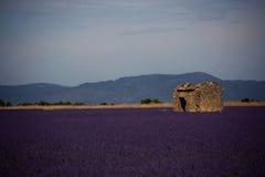 Exploração agrícola velha Foto de Stock Royalty Free