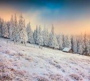 Exploração agrícola velha nas montanhas Manhã colorida do inverno Fotografia de Stock