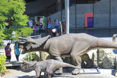 `Explora` Park sector. Medellin Colombia. Park with trees and donosaurs Stock Photos