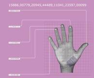 Exploración de la mano Fotografía de archivo