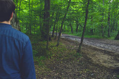 Exploración del bosque Fotografía de archivo