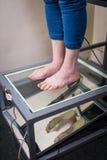 Exploración del pie de Digitaces del paso, exploración del pie de Orthotics para las plantillas por encargo del zapato, postura y fotos de archivo libres de regalías
