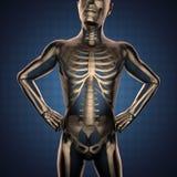 Exploración humana de la radiografía con los huesos libre illustration