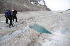 Exploradores na geleira de Athabasca imagens de stock royalty free