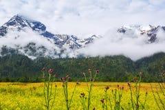 Explorando a montanha da neve fotografia de stock