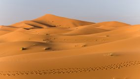 Explorando o deserto de sahara em Marrocos Fotografia de Stock Royalty Free