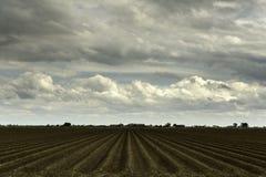Exploração agrícola arada em um dia de mola nebuloso Fotografia de Stock Royalty Free