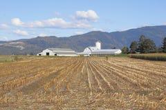Exploração agrícola canadense no vale Foto de Stock