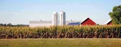 Exploração agrícola de Maryland Fotografia de Stock Royalty Free