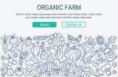 Exploração agrícola orgânica Imagens de Stock