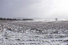 Exploração agrícola sob montanhas no inverno Fotos de Stock Royalty Free