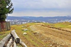 Exploração de madeira Fotos de Stock Royalty Free