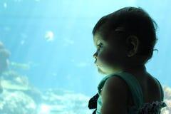 Exploration d'aquarium de petite fille images stock