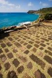 Explorations de l'Antigua image stock