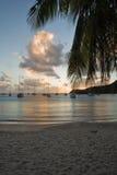 Explorations de l'Antigua images libres de droits