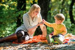 Explore a natureza junto Menino da mamã e da criança que relaxa ao caminhar no piquenique da família da floresta Mulher bonita da imagens de stock
