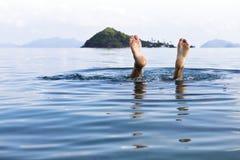 Explore o underwater Fotos de Stock Royalty Free