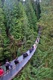 Explore a ponte de suspensão de Capilano fotografia de stock royalty free