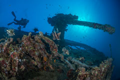 Explore underwater. Scuba diver explores underwater wreckage of the Thistlegorm. Backlit stern artillery gun with many lionfish in the foreground. Red Sea, Egypt Royalty Free Stock Image