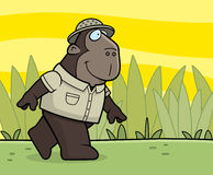 Explorer Ape Stock Photography