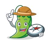 Explorer peas mascot cartoon style. Vector illustration Royalty Free Stock Images