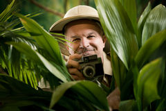 Explorer photographer hiding in vegetation Stock Images