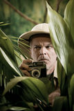 Explorer photographer hiding in vegetation Royalty Free Stock Photography