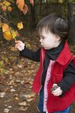 Exploring. Little girl exploring nature in the fall Royalty Free Stock Photography