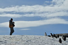 Exploring Antarctica. Standing in front of a perfert snow slope Antarctica royalty free stock images