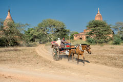 Exploring Bagan Royalty Free Stock Image