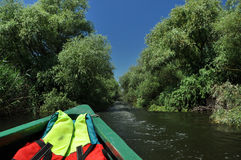 Exploring Danube delta with a boat Royalty Free Stock Photo