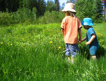 Exploring the field. Two boys looking at the many dandeloins, in the tall grassy field stock image