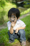 Exploring Nature. Little boy exploring nature by magnifier Royalty Free Stock Photography