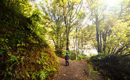 Exploring the outdoors. Royalty Free Stock Photo