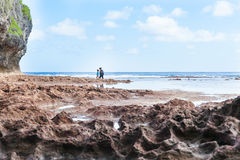 Exploring rock pools on coral shelf on tropical Niue Stock Photography