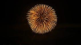 Explosão colorida clara brilhante do fogo de artifício japonês bonito no céu noturno escuro sobre a cidade grande na opinião escu video estoque