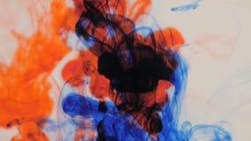 Explosão colorida da tinta no fundo branco filme