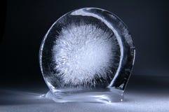 Explosão congelada Imagem de Stock Royalty Free