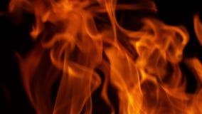 Explosão de fogo no preto video estoque