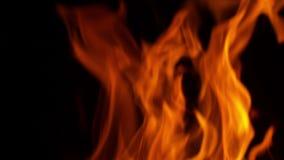 Explosão de fogo no preto vídeos de arquivo